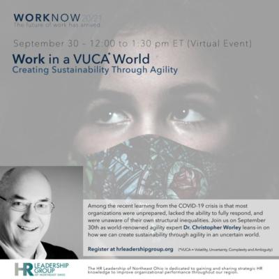 Work in a VUCA World - Creating Sustainability through Agility